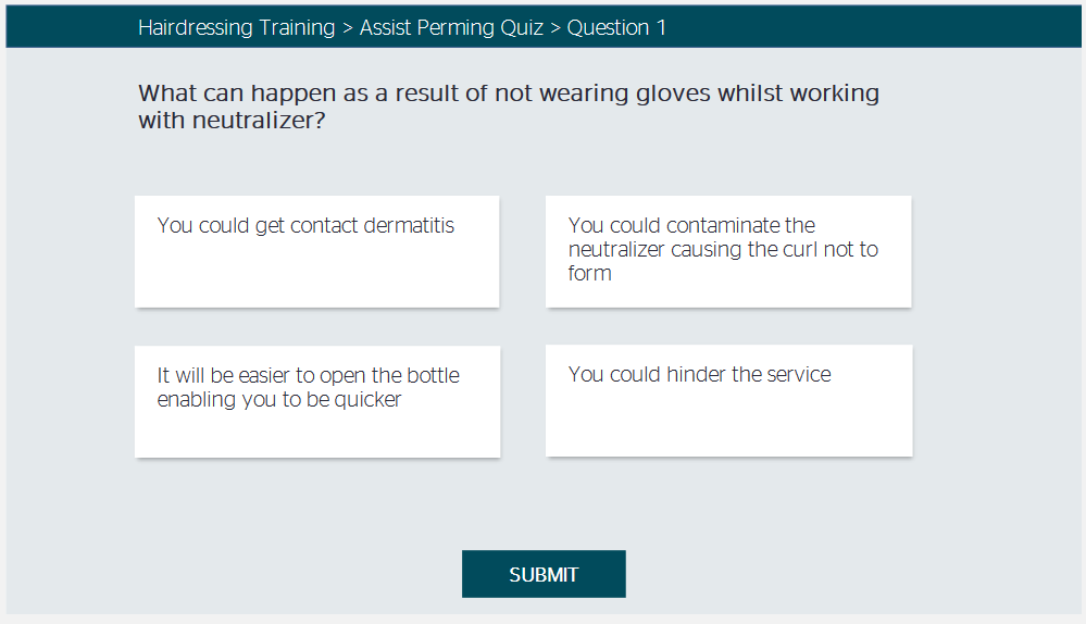 New style quiz format as a SCORM